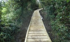 """Council's """"Rights of Way"""" team complete improvement works on Gwaenysgor boardwalk"""