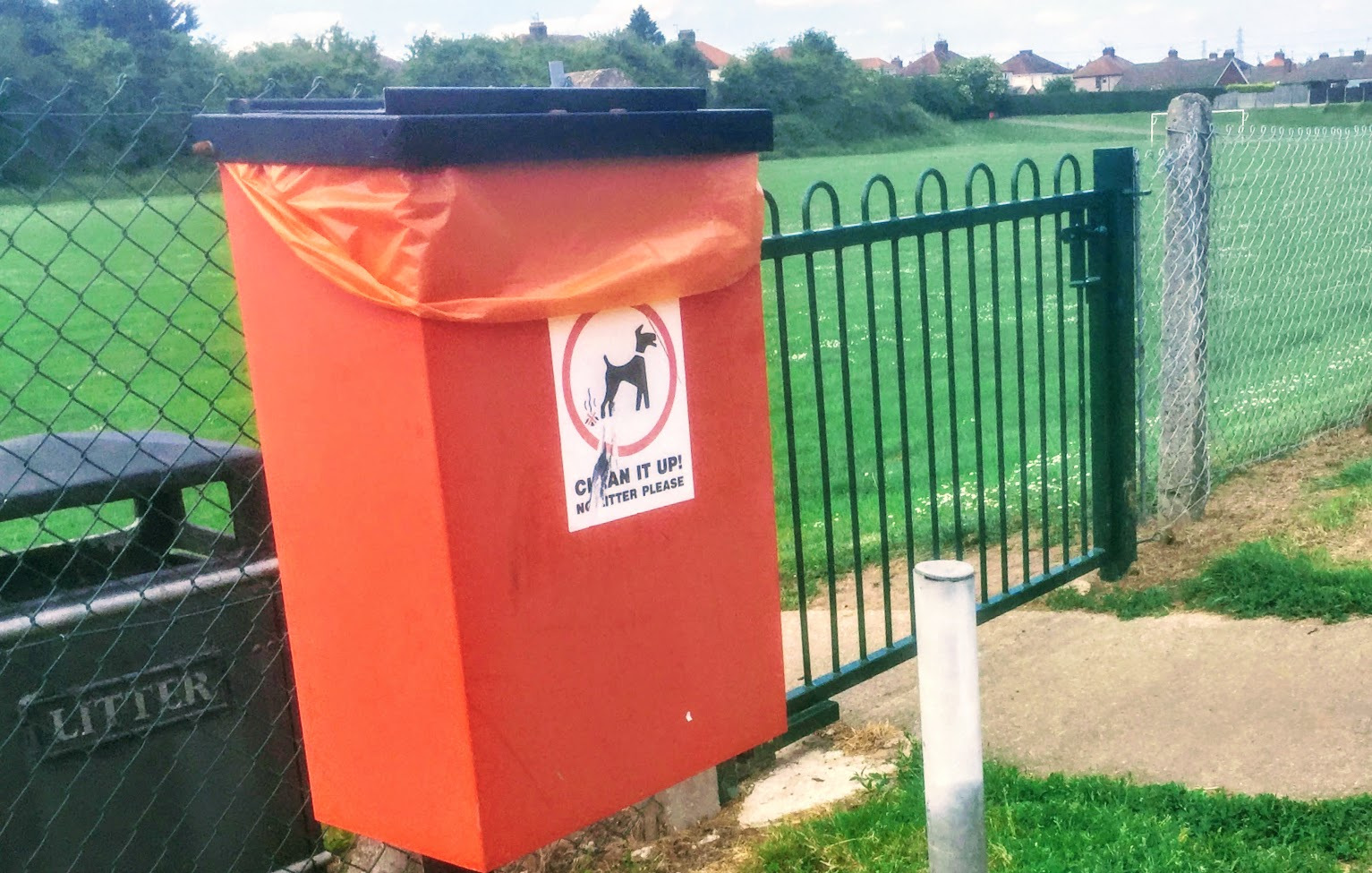 These are the new 'rules' dog walkers will need to follow to avoid a fine in Flintshire