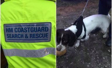 Coastguard rescue team called out to Connah's Quay docks following reports of a dog in the water.