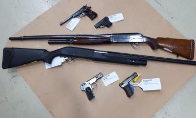 Gun 'amnesty' in North Wales sees 200 firearms and ammunition handed into police