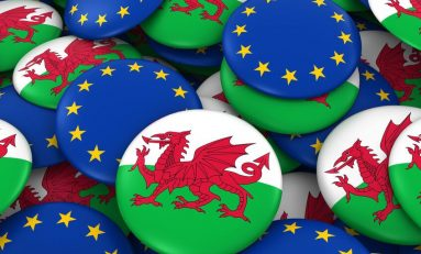 Welsh Government launch £50m fund to help businesses and public services prepare for Brexit.