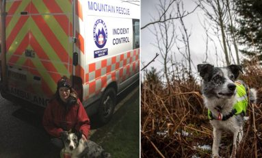 Missing person found safe and well following multi-agency search in Halkyn area on Thursday evening