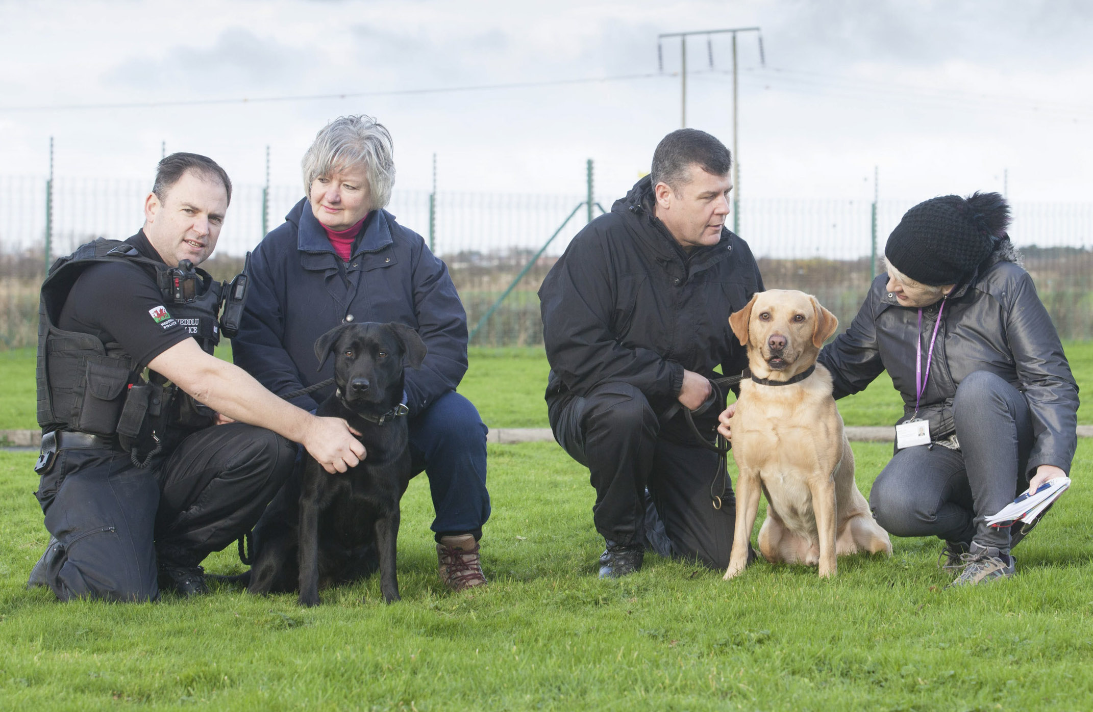 Two new police watchdogs are helping North Wales' four-legged crimefighters tokeep paw and order.