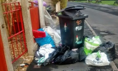 Flintshire Council set to start fining residents who leave bin bags out with waste bins