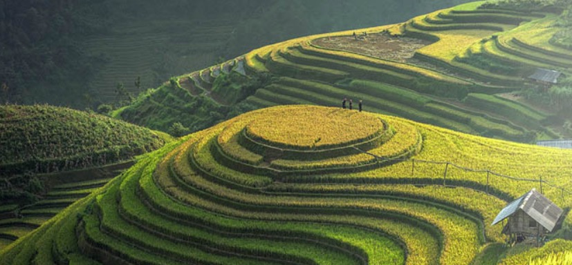 Marie Curie Wales is looking for people to trek across Vietnam to help raise funds