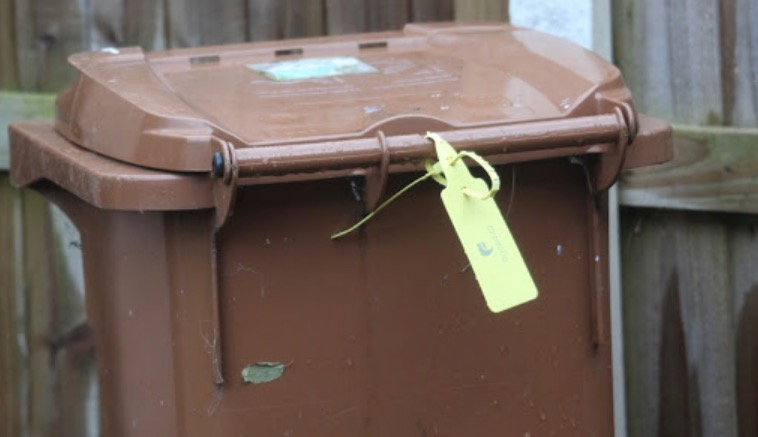 Garden waste collections set to resume in Flintshire from next week